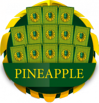 Chinese Pineapple