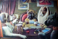 If dogs would play poker